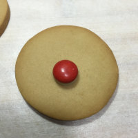 Christmas biscuit5